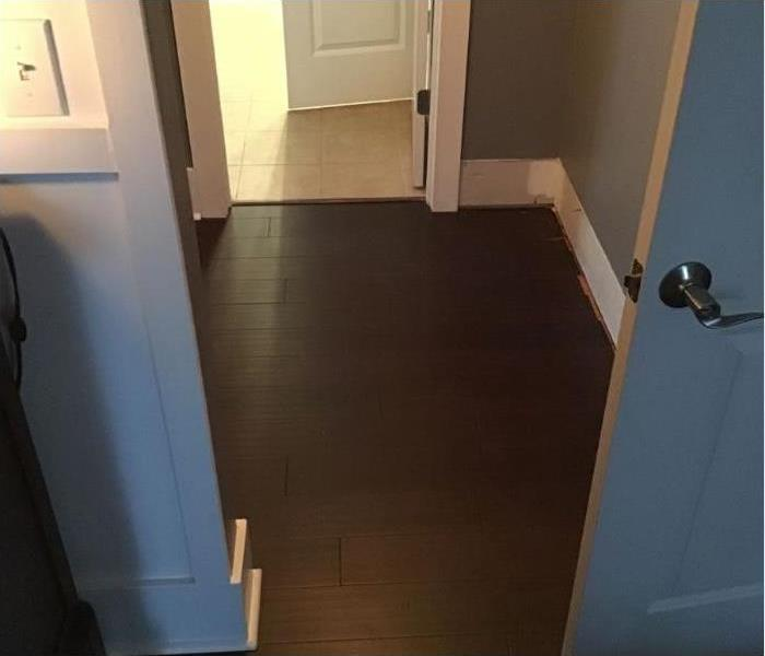 Hallway area with dried out dark hardwood floor