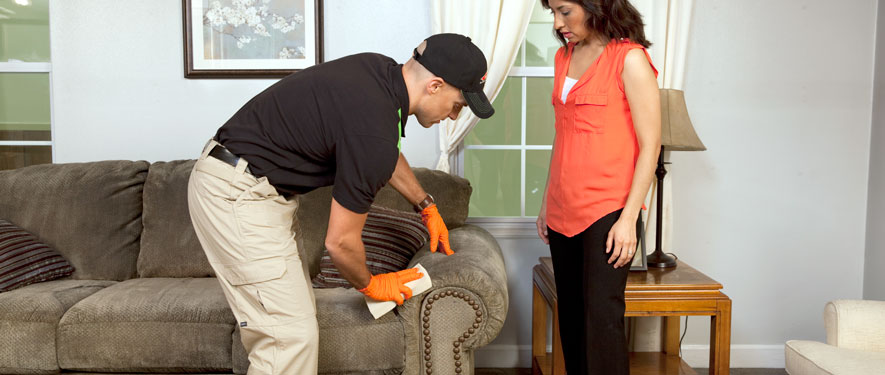 Matthews, NC carpet upholstery cleaning